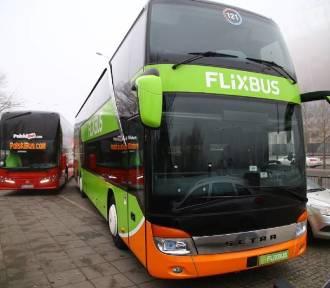 Z Wrocławia pojedziemy do Amsterdamu. Nowe połączenie Flixbusa