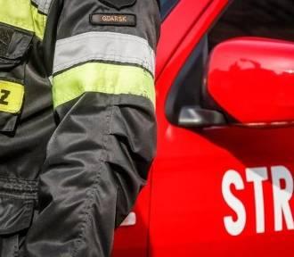 Pożar stajni w Rzucewie. Zwierzęta wyprowadzono przed przyjazdem straży pożarnej