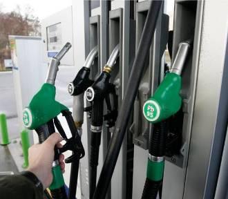 Uwaga! Na stacjach benzynowych już są nowe oznaczenia paliw