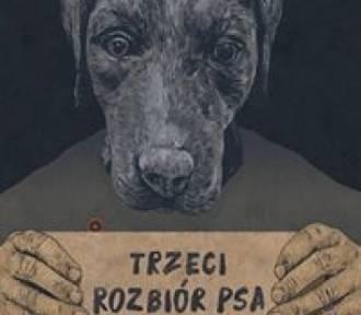 Jak przeciwdziałać znikaniu takich miejsca jak Bomba, Piękny Pies, ARS