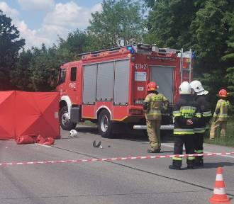 Śmiertelny wypadek na DK 10 w powiecie lipnowskim. Nie żyje motocyklista [zdjęcia]