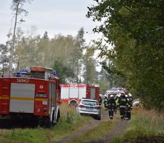 Pocisk znaleziony w lesie zabił dwóch saperów, czterech jest rannych! [ZDJĘCIA]