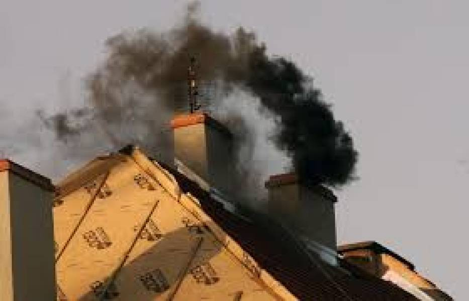 Lekarz weterynarii Dorota Sumińska: Zwierzęta tak samo chorują i umierają z powodu smogu