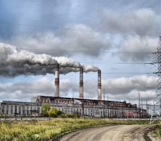 Aktualne zanieczyszczenie powietrza w Gdańsku.