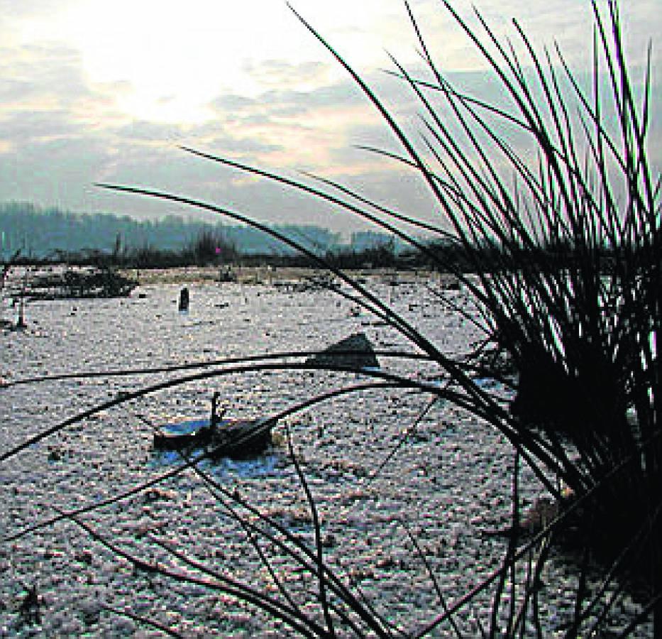 Utrzymanie stałego poziomu wody w zbiornikach gwarantuje również ochronę ptasich siedlisk