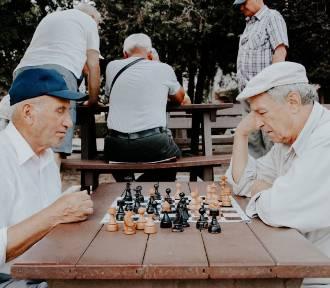 Polacy boją się niskich emerytur. Zamiast iść na świadczenie, chcemy dalej pracować