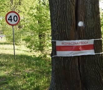 Wypadki na łuku drogi nr 276 w Radoszynie. Postawią radar