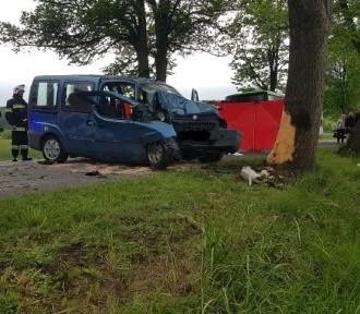 Śmiertelny wypadek w pobliżu Kniewa. Nie żyje jedna osoba