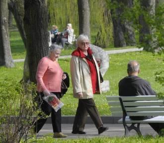 Są plany na renowację parku w Nałęczowie. Brakuje tylko pieniędzy