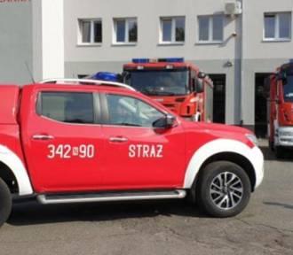 Konar spadł na trakcję tramwajową w Elblągu. Usuwali go strażacy