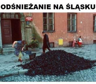Memy o Śląsku. Co Ślązakach myślą w reszcie kraju? Zobaczcie