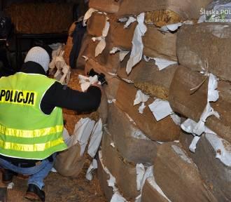 Prawie 3 tony nielegalnego tytoniu w Wojsce