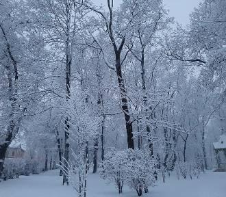 Zima wrócia z przytupem. Zobaczcie zdjęcia internautów z powiatu jasielskiego