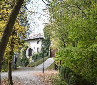 Podkrakowskie dolinki w kolorach jesieni. Można zakochać się w tych widokach!