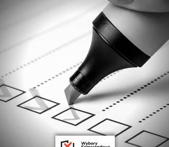 Wybory samorządowe 2018. Kogo będziemy wybierać? [PRZEWODNIK]