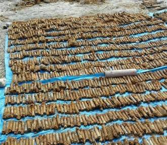 Dolny Śląsk. Znaleźli ponad 4000 sztuk niewybuchów! Zobacz zdjęcia