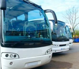 Nowa linia autobusowa Poddębice - Zelgoszcz już działa. U nas sprawdzisz rozkład autobusów