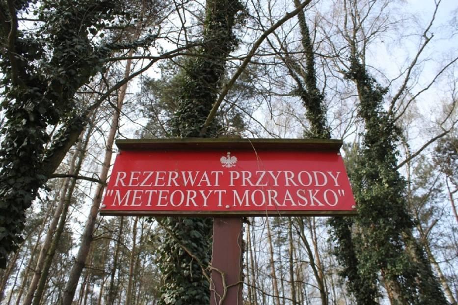 Rezerwat Morasko