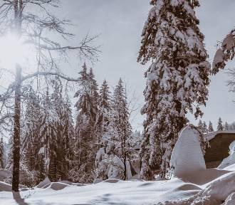 Zima zaatakowała, zmroziła, a teraz odwilż. Ale nadciąga do nas arktyczne powietrze!
