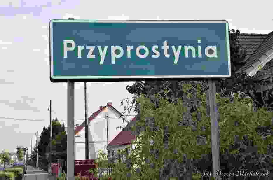 Przyprostynia - Wieś w gminie Zbąszyń