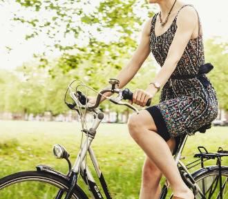 Atrakcje turystyczne Mazowsza, które zwiedzisz na rowerze