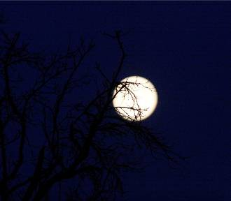Wyjątkowa pełnia księżyca już w niedzielę. Co nas czeka?