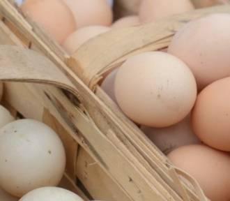 Kolejne skażone jajka trafiły do znanych sieci sklepów