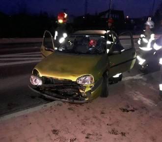 Jeden kierowca potrącił jelenia, drugi skosił znak drogowy
