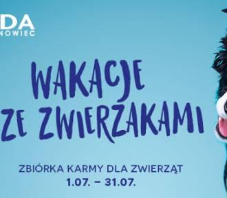 Wakacje ze zwierzakami - Plejada w Sosnowcu pomaga!