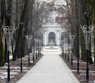 Park Zdrojowy w Busku już w świątecznej i... zimowej szacie. Podziwiajcie [ZDJĘCIA]