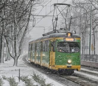 Atak śnieżycy w Poznaniu. Zobacz zdjęcia!