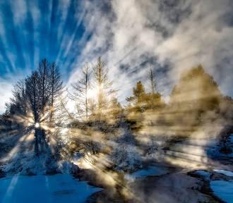 """""""Upał"""" w zimie! Od poniedziałku możliwe nawet 14 stopni! Za zakrętem już wiosna!"""