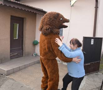 Wodzenie niedźwiedzia w Schodni. Zobacz zdjęcia!