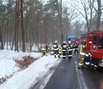 Auto wypadło z drogi i uderzyło w drzewo