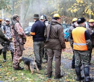 Czy myśliwi przeforsują udział dzieci w polowaniach?