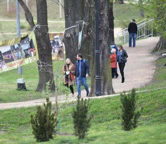 Odpoczynek w Żarach. Skorzystajcie ze słonecznej pogody i pospacerujcie po parku