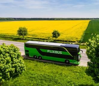 Nowe połączenia Flixbusa z Wrocławia. Sprawdź, gdzie można pojechać już w lipcu! [ROZKŁAD JAZDY]