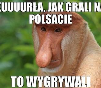 Polska - Senegal: zobacz najlepsze memy po porażce biało-czerwonych