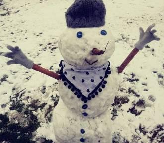 Pierwsze bałwany tej zimy! Nie tylko dzieci mają frajdę [ZDJĘCIA]