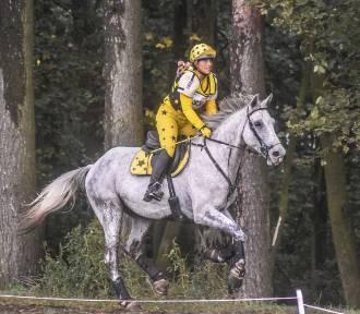 Gm. Szamotuły. Trwają zawody konne LOTTO Baborówko Horse Sale Show [ZDJĘCIA]