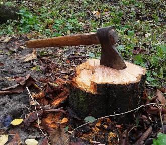 Leśniowice. Wypadek przy wycince drzewa, 50-latek trafił do szpitala