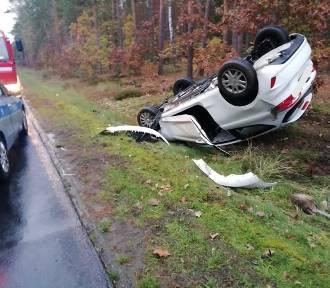 Wypadek na trasie Budzyń - Wągrowiec. Auto zderzyło się z dzikiem