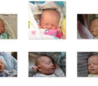 Zdjęcia maluszków urodzonych w czerwcu