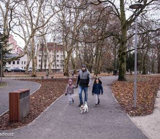 W obiektywie Tadeusza Surmy: park Jagielloński jak nowy