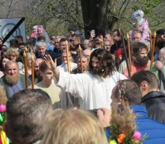Jezus na osiołku w Kalwarii Zebrzydowskiej [ZDJĘCIA]