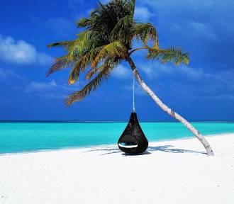Gdzie polecieć na wakacje 2021? Gdzie test, gdzie kwarantanna, a gdzie bez niczego?