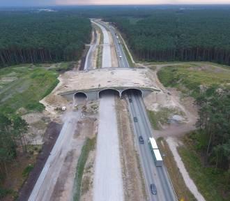 Budowa S5 pod Bydgoszczą. Jak idą prace? [zdjęcia]