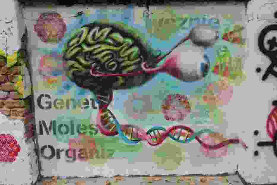 Mural przeciwko Genetycznie Modyfikowanym Organizmom w Centrum Off Piotrkowska