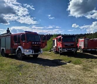 Pożar lasu pod Olkuszem gasiło 22 jednostek straży pożarnych i trzy samoloty