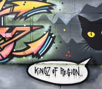 Street art na Lubelszczyźnie. Zobacz najciekawsze murale i graffiti w regionie!